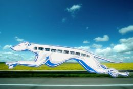 Entry number 89658 - Greyhound Bus
