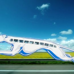 Entry number 89658 - Greyhound Bus Picture