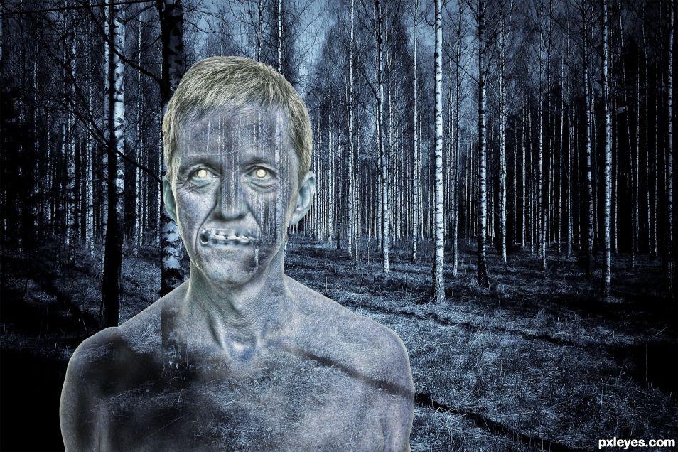 Birch Ghost