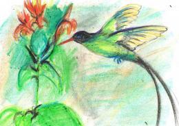 Birdsdonothavehands