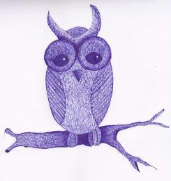 Zero Owl