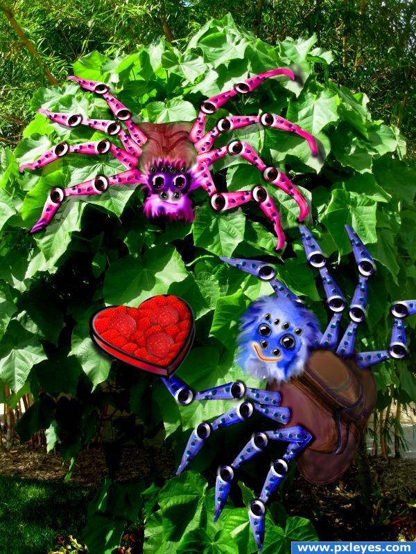 Spiders in Love (Nisha CUTE)