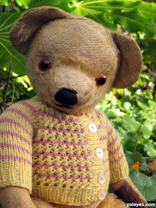 Like a Teddy Bear