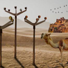 Desertwatch