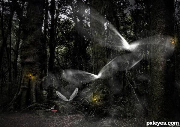 Mystery Woods in Twilight