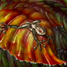 Frog on Red Leaf