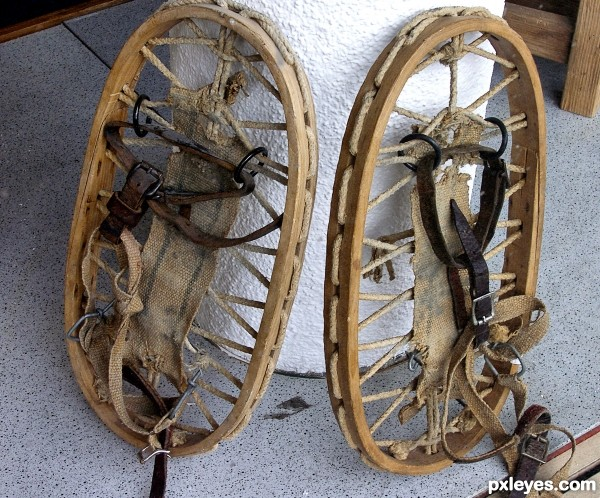 Grandfathers snowshoes