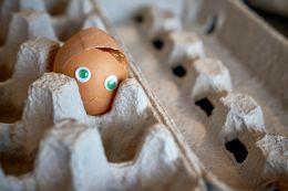 Band-egg