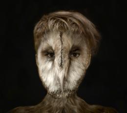 OwlLady