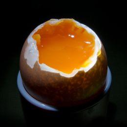 Orangecore