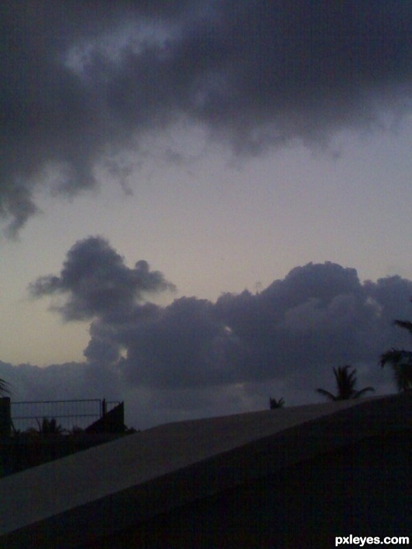 The wierd animal cloud