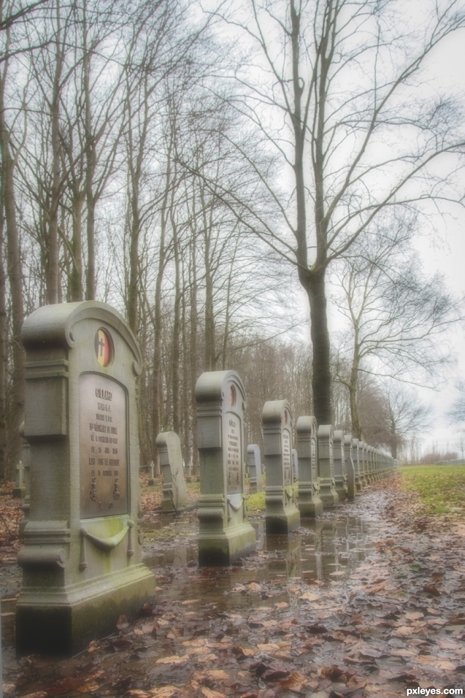 Military cementery