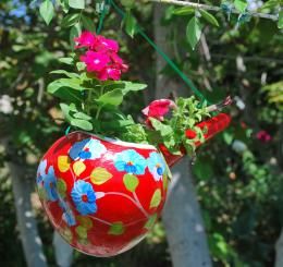 flowersforflowers