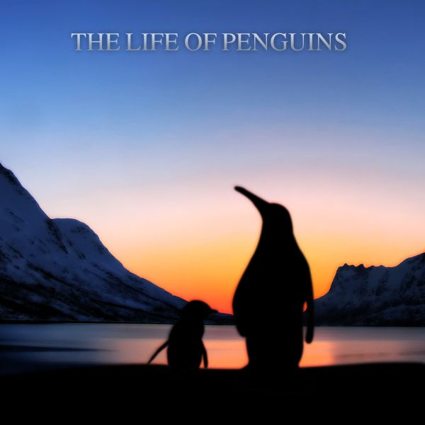 The Life of Penguins