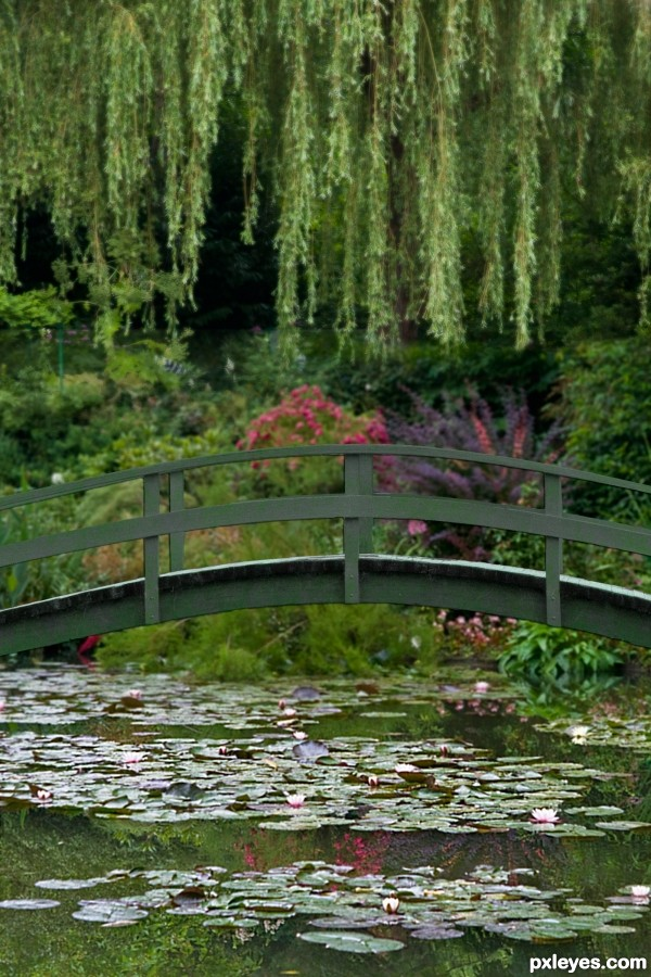 Monet, Bridge over Water Lilies