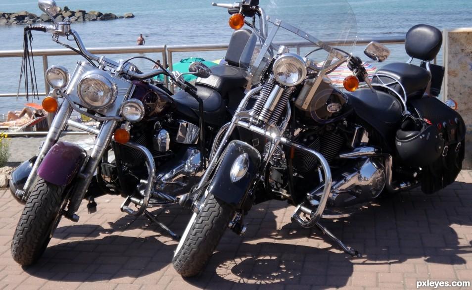 2 Harleys