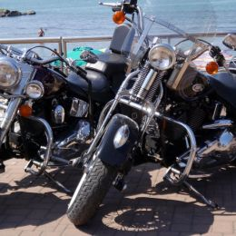2Harleys