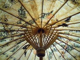 littleumbrella