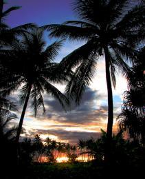HawaiianLandscape