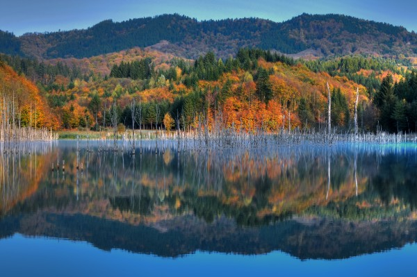 Autumn paradise HDR