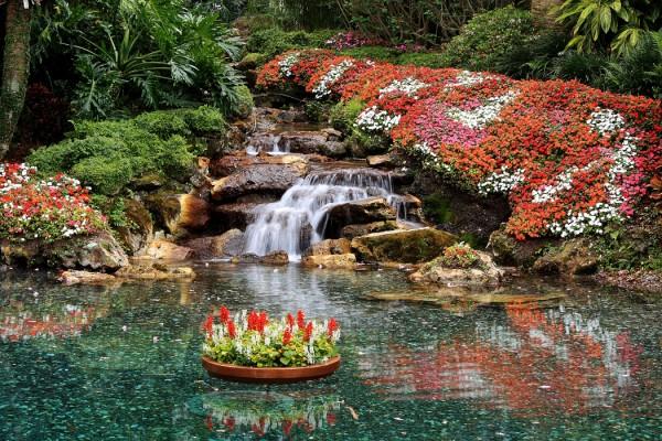 Peaceful Paradise