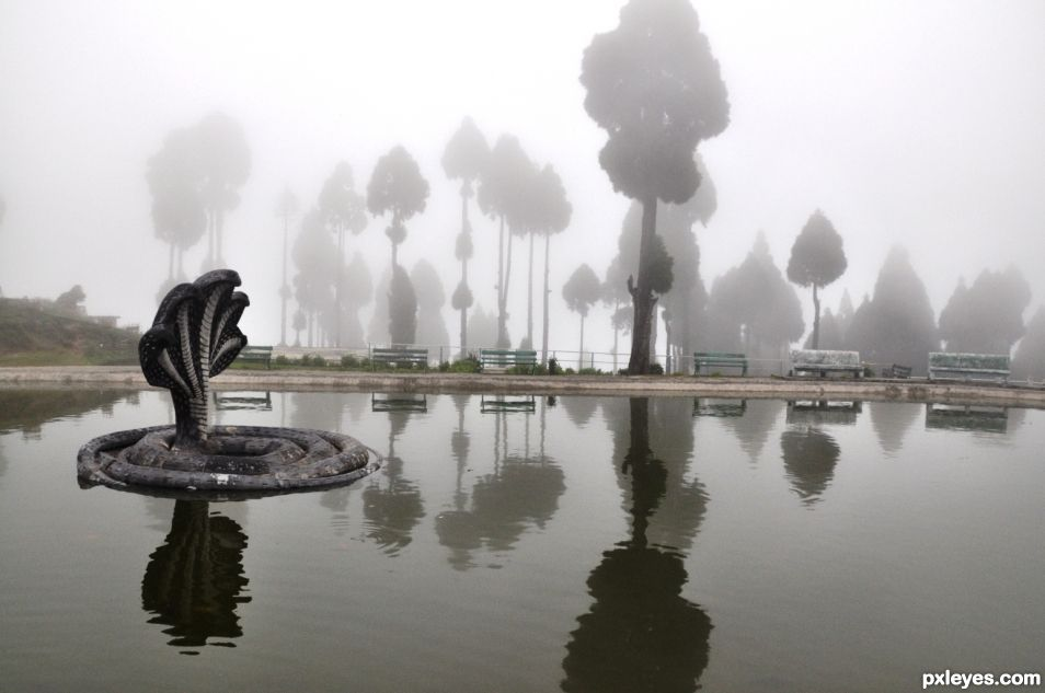 Only fog Around