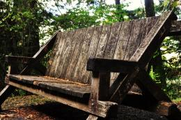 ForestBench