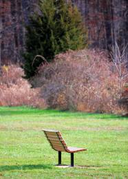 lonelybench