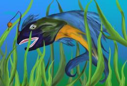 Parrot Color Fish