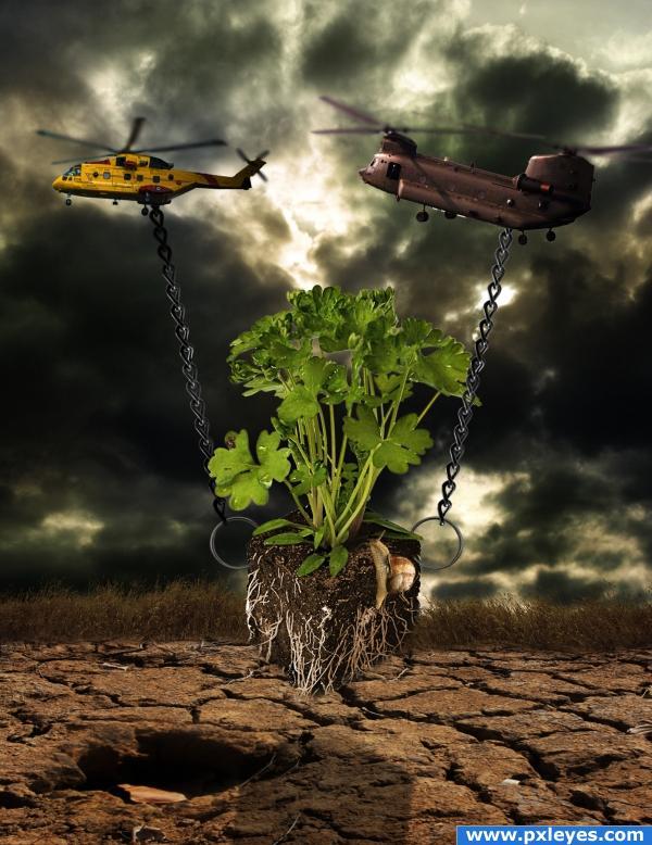 Last green plant rescue