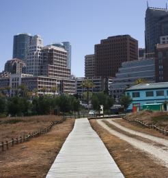 Historic Pathway