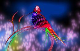 Chillibird