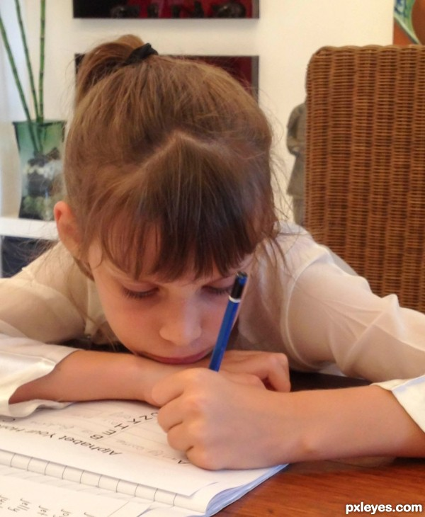 Pencils are best for homework
