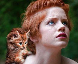 The Irish Kitten with Italian Pompadour