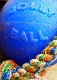 Thejollyball