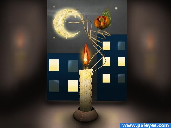 Candle,Flower,Moon
