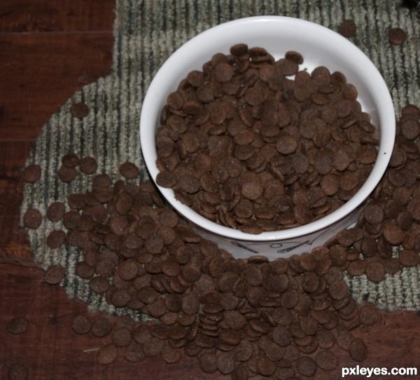 Brown Dog Food Leaving Bowl