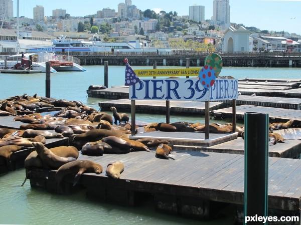 A famous pier