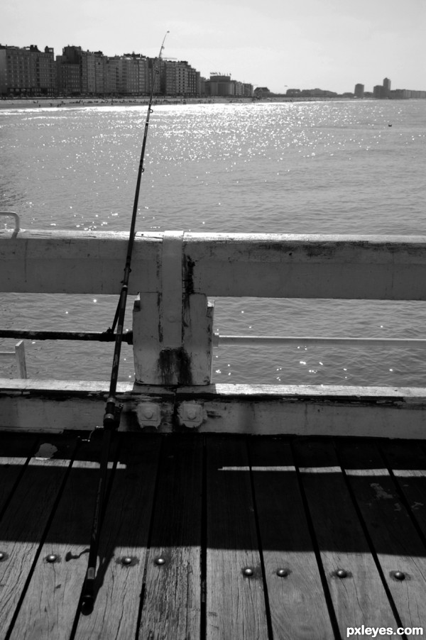 From the pier