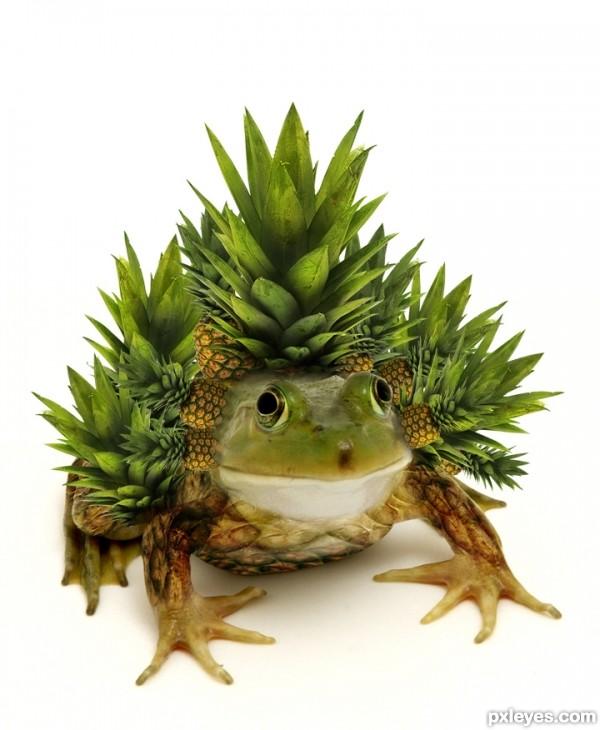 pineapple frog