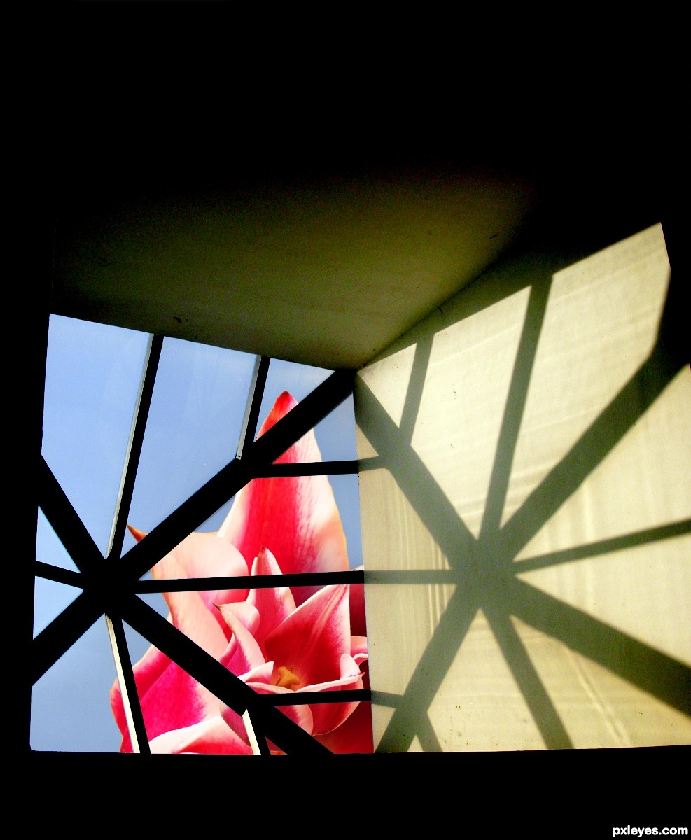 Through the skylight picture by drivenslush for pink for Skylight net login