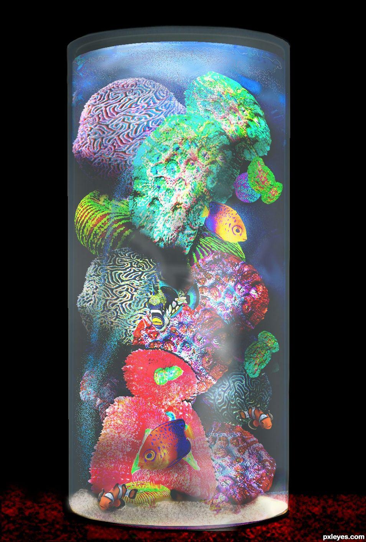 Black Light Aquarium Poster