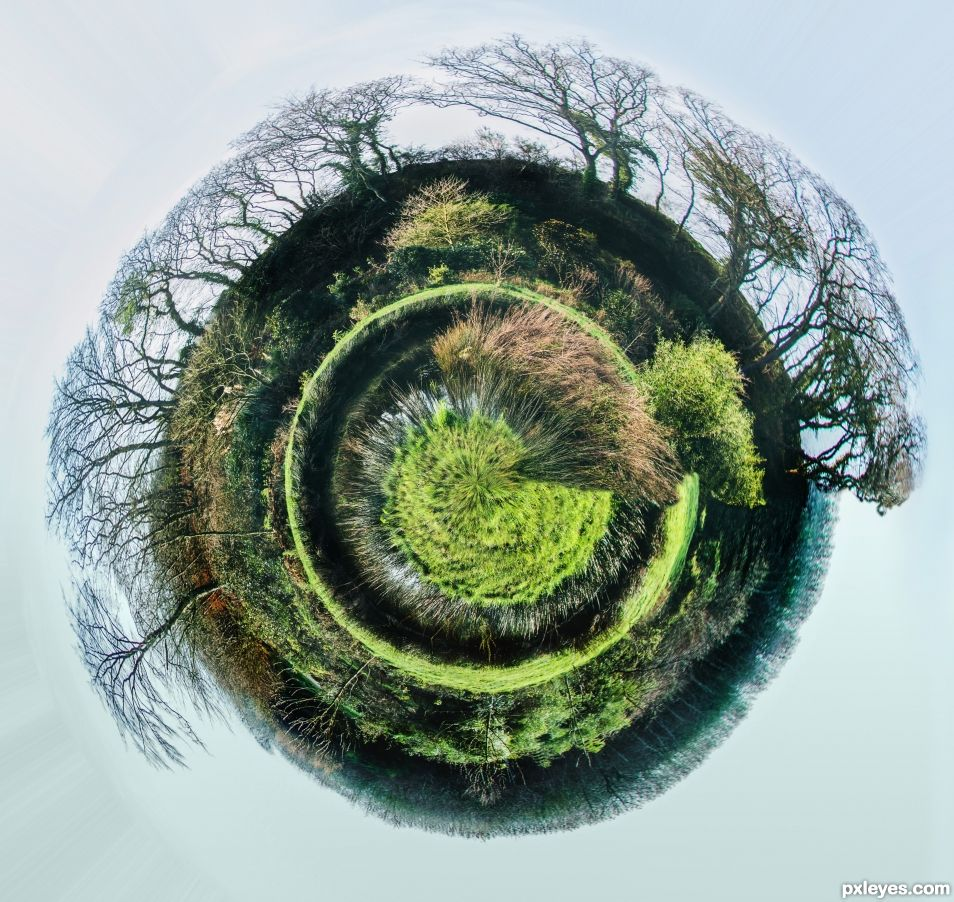 Little forest planet