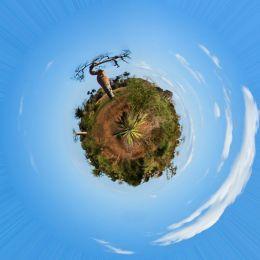 Baobabsplanet