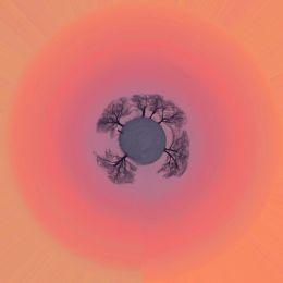 Peach Tree Planet