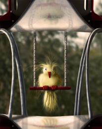 TheSacredBird