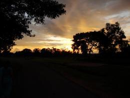 A Walk In The Golden Evening