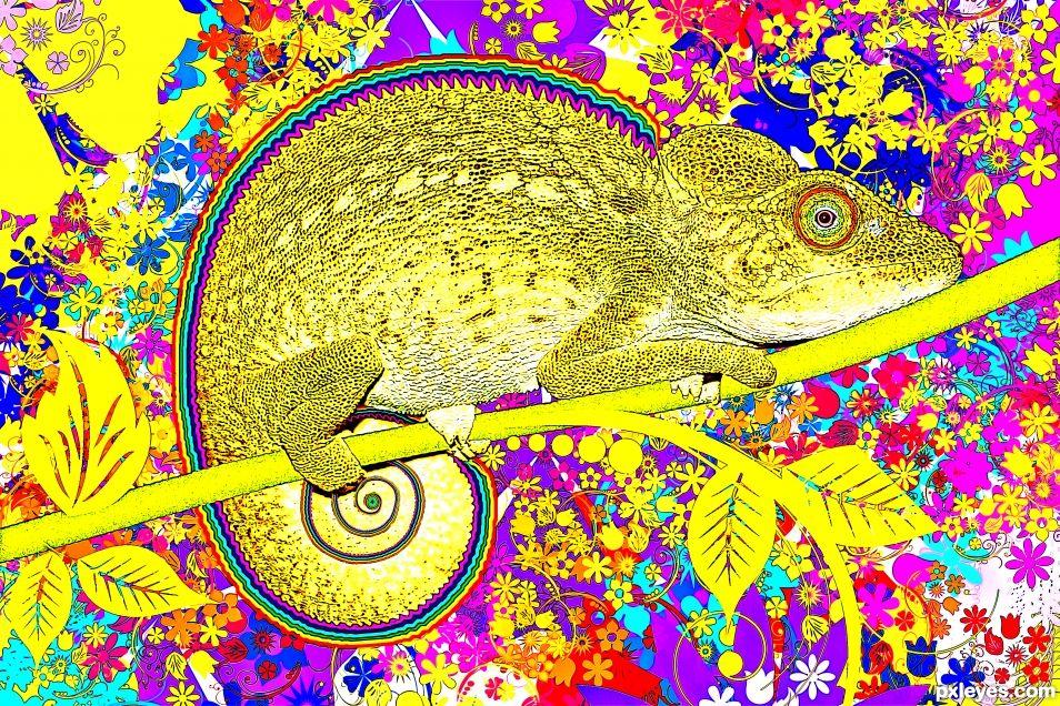 Yellow chameleon