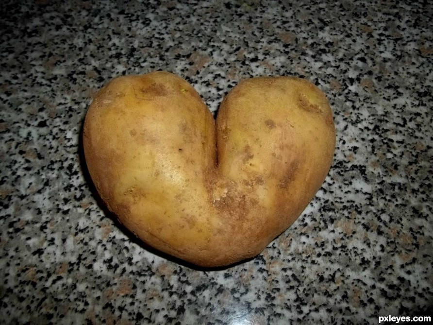 Love is everywhere!