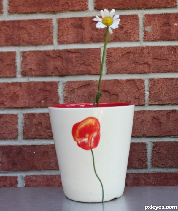 Red and White Pot